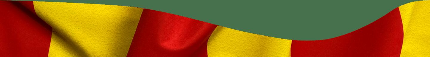 flag of camargue